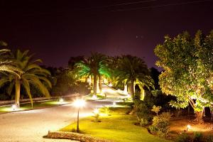 Palms-Nght-067
