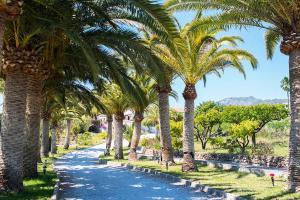 Villa-Pines-6489