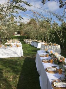 molino de casanova wedding dinner (1)