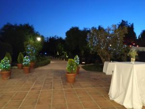 nerja wedding cortijo bravo dinner (31)