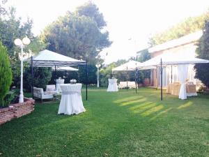 nerja wedding jardines del trapiche drinks reception (3)